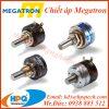 chiet-ap-megatron